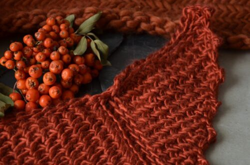 Mini sample of Porphyry - a free Tunisian crochet shawl pattern, with orange fruit on a branch